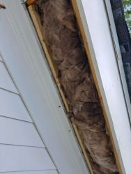 Bee Proofing Eaves Marietta - bee removal services in marietta, georgia