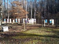 North GA bear proof bee yard Blueridge electric fence