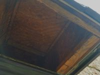 b_200_200_16777215_00_images_files_Macon_Honey_Bee_Removal_from_Bay_Window_3.jpg