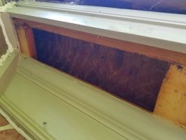 Honey Bees Removed From Eaves